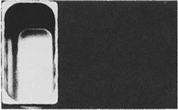 GN-Behälter 1/3 20 mm -- Schale